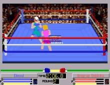 4-D Boxing screenshot