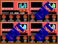 Basket Manager, The screenshot