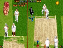 Ian Botham's Cricket screenshot