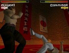 Karate Fighter screenshot