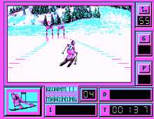 Super Ski screenshot
