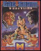 Tag Team Wrestling box cover