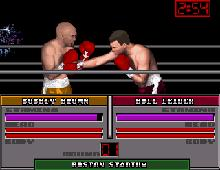 TV Sports Boxing screenshot