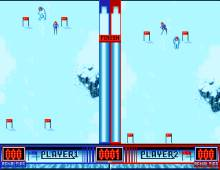 Winter Supersports 92 screenshot