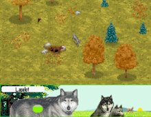 Wolf screenshot